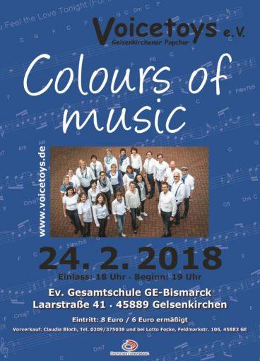 Plakat zum Voicetoys Konzert am 24.02.2018