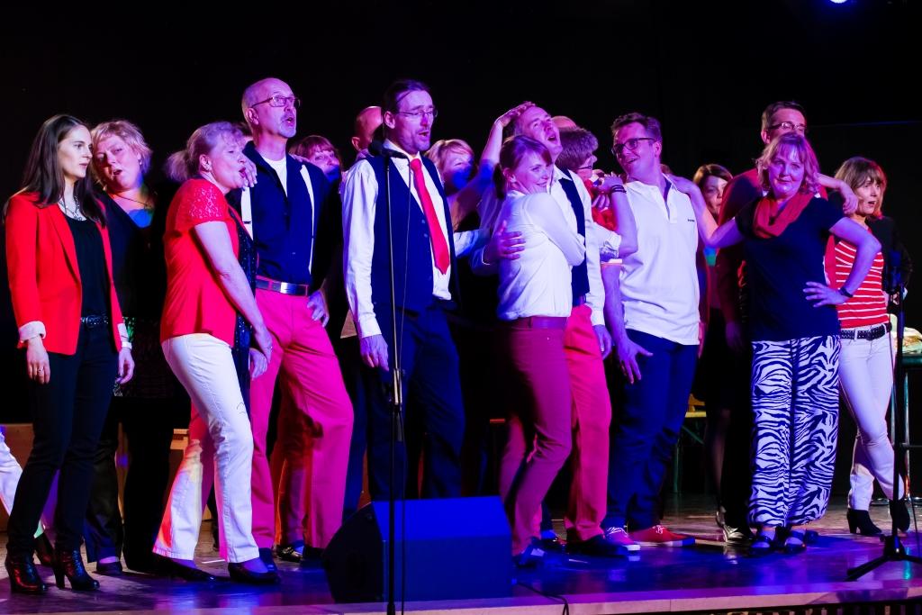 Voicetoys im Konzert 2015